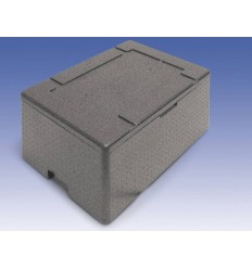 Thermo box for transporting food